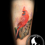 Tattoo tattoos austin best artist texas awesome badass cute wicked dark evil men women guys girls cool realism realistic color black and grey traditional art male female men's women's awesome bird cardinal
